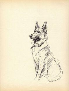 GERMAN SHEPHERD 1930s, Vintage Dog Book Print, Lucy Dawson, Vintage Illustration to Frame, Book plate, black & white, German SHepherd