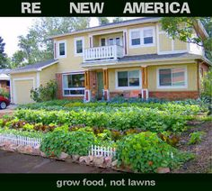 Grow Food, Not Lawns! Turn your front lawn into a food source - how gorgeous is this! (Thanks http://notbuyinganything.blogspot.com)