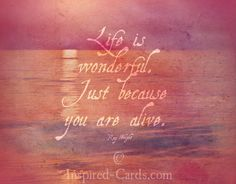 http://inspired-cards.com/store/products/life-is-wodnerful/