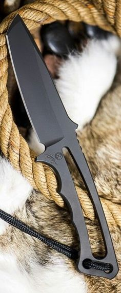 Chris Reeve Professional Soldier Fixed Tanto Blade Knife Cool Knives, Knives And Tools, Knives And Swords, Bushcraft, Sword Design, Neck Knife, Throwing Knives, Tactical Knives, Tactical Gear