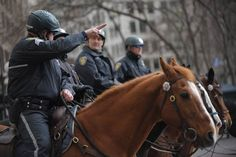 policemen on horses.