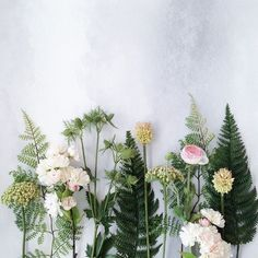 ZsaZsa Bellagio – Like No Other: les fleurs