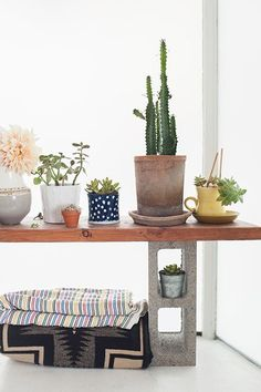 10 Super-Easy DIYs For A Better Apartment #refinery29  http://www.refinery29.com/diy-projects-for-home#slide10  Repot All Your Plants  Putting your green friends in new homes will add instant cheer. We're obsessed with the offerings at Heath Ceramics. Replanting is also always a good opportunity to see what greens have outgrown their current homes. Some may need to upsize.