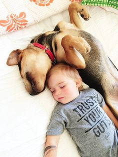 Month Update On The Toddler Who Takes Naps With His Puppy The - Toddler naps with puppy