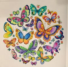– My coloring books - Malvorlagen Mandala Butterfly Drawing, Butterfly Wallpaper, Butterfly Pictures, Color Pencil Art, China Painting, Coloring Book Pages, Beautiful Butterflies, Ink Art, Doodle Art