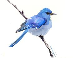 Bird artwork, Mountain Bluebird, blue pink green bird artwork, original watercolor painting, one of a kind birds of USA by ORIGINALONLY on Etsy