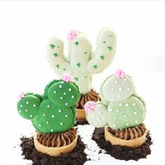 """1,351 Likes, 9 Comments - AmourDuCake (@amourducake) on Instagram: """"Cactus macarons  by @christinascupcakes . Cactus macarons are my favourite macarons. Les macarons…"""""""