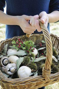 Sea Weed Recipes, Elderberry Recipes, Edible Wild Plants, Food Photography Tips, Edible Food, Wild Edibles, Seasonal Food, Edible Flowers, Medicinal Plants