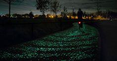 Notte Stellata di Van Gogh su una pista ciclabile luminosa [FOTO] |I posti più…