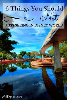 6 Things You Should Not Miss Seeing in Disney World