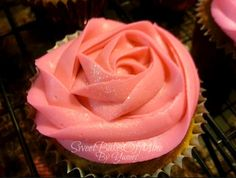 Rose Cupcake Swirl