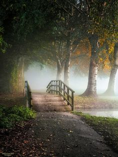 🇳🇱 Bridge to the fog (Netherlands) by Herman van den Berge on cr. Landscape Art, Landscape Photography, Nature Photography, Beautiful Nature Wallpaper, Beautiful Landscapes, Nature Aesthetic, Nature Pictures, Amazing Nature, Pretty Pictures