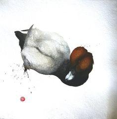 Pochard Male  - Karl Martens - watercolor