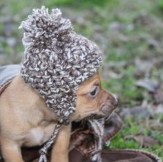 OMG THIS IS TOO CUTE!!! Puppy Earflap Beanie