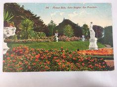 1914 Flower Beds, Sutro Heights, San Francisco, CA postcard