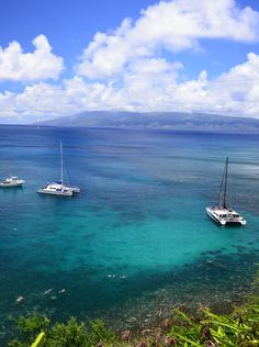 The very best things to do on Maui including snorkeling.