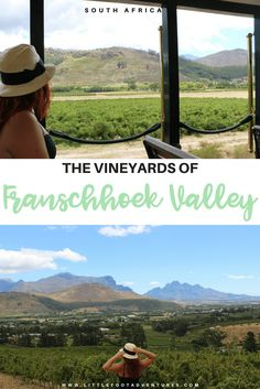 The Vineyards of Franschhoek Valley. South Africa is world known by its vineyards. The quality and unique flavour of the wine produced is one of the reasons people visit Franschhoek. Read more, here at www.littlefootadventures.com  Africa | South Africa | Franschhoek Valley | Franschhoek | Top things to do | Cuisine | Shopping | Scenery | History | Culture | City | Guide | Wine | Vineyards | Wine Tasting  #Africa #SouthAfrica # Franschhoek #Thingstodo #List #Cuisine #Wine # Vineyards