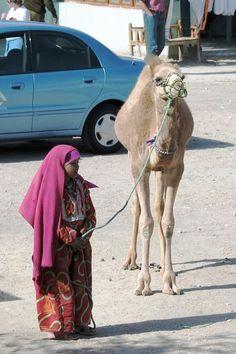 Egypt Pictures: Hurghada (Red Sea) - Mrs. Redd's Social Studies