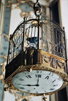 birdcage with clock bottom
