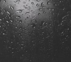 dark paradise [!]:. : Photo