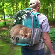 Cats and kittens are the funniest animals on Earth. Just look how all these cats & kittens play, fail, get along with dogs, make funny sounds, Cute Funny Animals, Cute Baby Animals, Animals And Pets, Happy Animals, Funniest Animals, Cat Backpack Carrier, Cat Carrier, Dog Travel, Travel Backpack