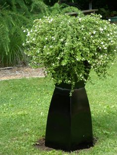 Ideas to Cover Well Pump. 23 Ideas to Cover Well Pump. Pretty Backyard Landscaping to Hide Well Pump Outdoor Projects, Garden Projects, Outdoor Ideas, Garden Ideas, Garden Inspiration, Outdoor Spaces, Outdoor Decor, Outdoor Living, Kew Gardens