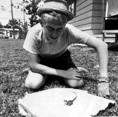 A Florida boy with his pet Florida alligator (1962). | Florida Memory
