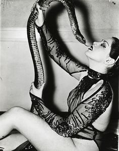 Vintage Photographs of Zorita – the Classic Burlesque Snake Dancer, in the and Cabaret, Vintage Photographs, Vintage Photos, Burlesque Vintage, No Photoshop, Dita Von Teese, Showgirls, Vintage Beauty, Black And White Photography