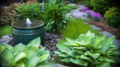 Traditional Landscape/Yard with Hosta, Stone walkway, Water fountain