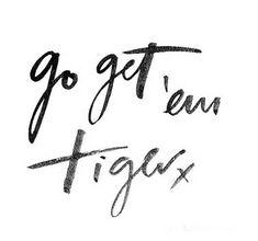 Go get em tiger                                                       …