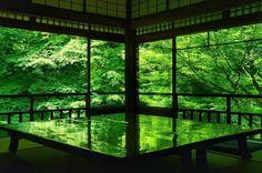 これは現実世界か?と言葉を失うほどに…。2ヶ月限定「瑠璃光院」の紅葉が神秘の美しさ | by.S