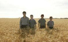 boys in the field.