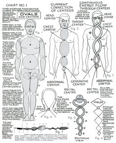 """lucifelle: """" Polarity Therapy Charts """"The Wireless Anatomy of Man"""" Its neat to see this in chart form as we bring these concepts to life during massage. 7 Chakras Meditation, Kundalini Yoga, Magick Book, Witchcraft, Les Chakras, Surya Namaskar, Spirit Science, Qigong, Holistic Healing"""