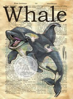 Whale Mixed Media Drawing on Antique Dictionary Page - flying shoes art studio Book Page Art, Art Pages, Book Art, Newspaper Art, Dictionary Art, Illustration, Medium Art, Art Techniques, Art Studios