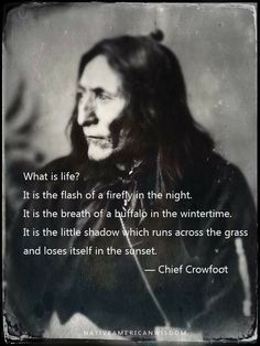 Wisdom Quotes, Words Quotes, Wise Words, Quotes To Live By, Life Quotes, Sayings, Native American Spirituality, Native American Proverb, Native American Wisdom