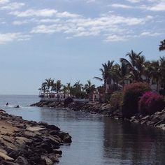 #puertomogan #grancanaria #spain #sun #sunshine #atlantic #ocean #sky #skyporn #clouds #palm #trees #beautiful #iphoneonly #iphonography #instagood #instamood #enjoy #vacation - @anitastaahle- #webstagram