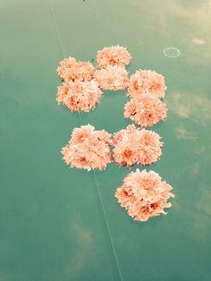 FlowerLab - flower designer