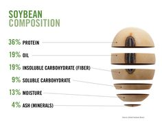 Breakdown of a soybean! There are many different uses.