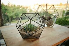 Medium Icosahedron Stained Glass Terrarium // Geometric Terrarium // Rustic Mini Greenhouse // Valentine's Day Gift // Indoor Planting