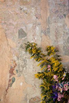 foto di Emilio Scoti  (fioraio bianchi milano)