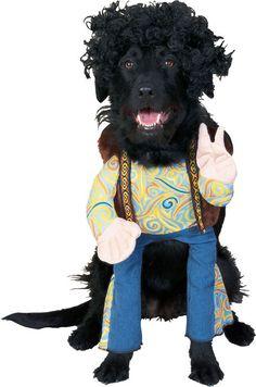 Disfraces para perros: Hippie