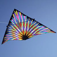 Delta by Jordi Morella, a plan for 1 line kite hosted at the deltas category of the KPB