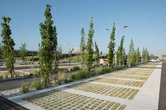 What is Landscape Architecture? What Is Landscape Architecture, Landscape Concept, Stairs Architecture, Urban Landscape, Parking Plan, Car Parking, Landscape Design Program, Landscape Engineer, Street Installation