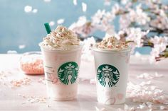 Money Versed 14 Amazing Starbucks Drinks You Cant Get Anywhere In America Coffee Jelly, Hot Coffee, Japanese Candy, Japanese Food, Cherry Blossom Season, Cherry Blossoms, Espresso Drinks, Starbucks Drinks, Frappuccino