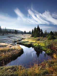 Bohemian - Bohemian Forest, Sumava National Park, Czech Republic