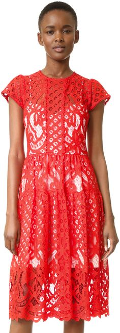 Poppy red lace midi dress. Parker Talulah Dress
