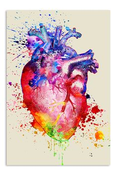 Watercolor heart 11 x 14 anatomy medical print by artofthepage heart anatomy drawing, anatomy art Watercolor Heart Tattoos, Watercolor Art, Anatomy Art, Heart Anatomy Drawing, Human Anatomy, Human Figure Drawing, Medical Art, Heart Art, Art Plastique