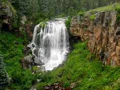Pacheta Falls flourishes in the White Mountains of Arizona. How come I've never heard of this place! Must go!