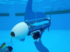 Highly customizable robot fish called naro-nanins, developed by the nautical robot team at ETH Zurich, are teaching kids about biology and technology. Underwater Drone, Underwater Video, Educational Robots, Samurai Helmet, Real Robots, Drones, Futuristic Technology, Robot Design, Rc Model