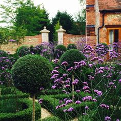 Joanne Alderson Design create understated, elegant and beautiful gardens.